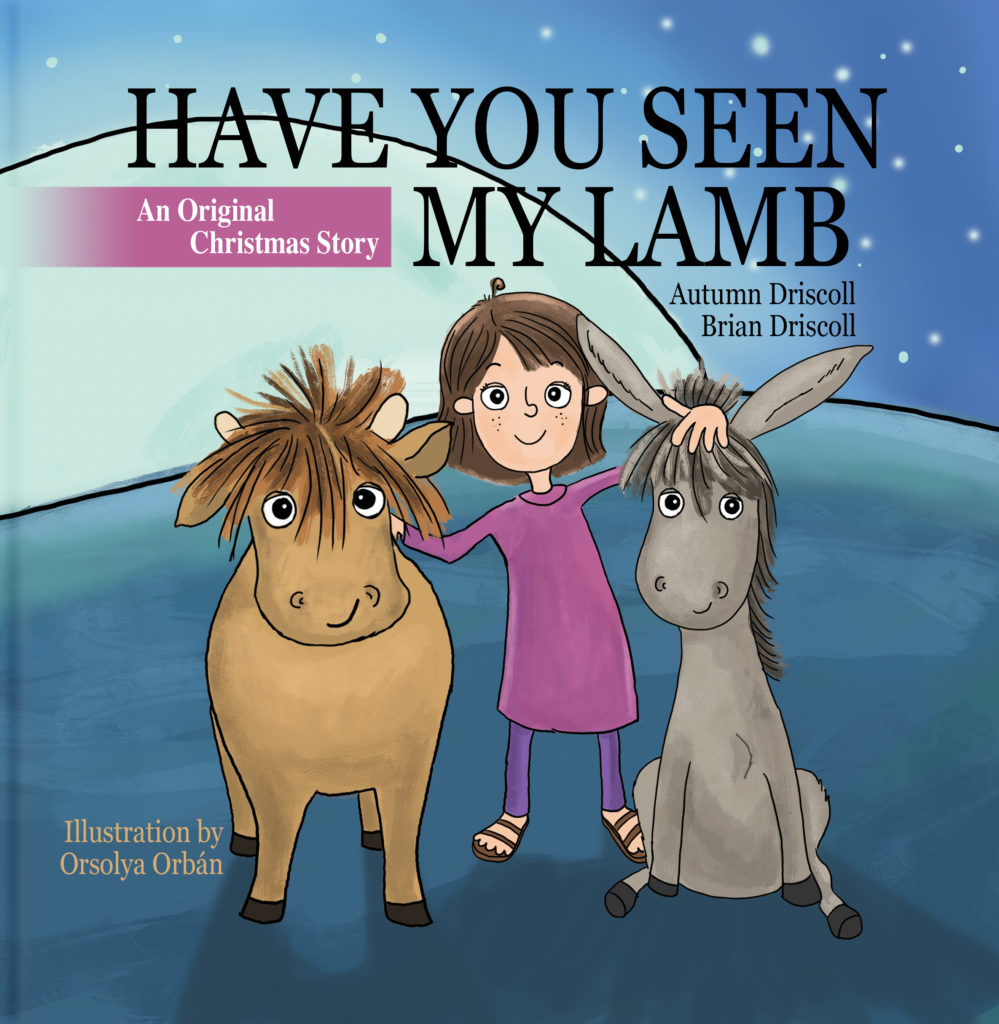 have you seen my lamb hardcover